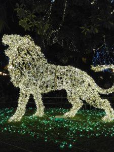 Leone di luci a Salerno