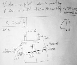 schema delle 4 camere cardiache con affluenti, valvole ed effluenti